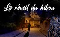 LE REVEIL DU HIBOU (18€)